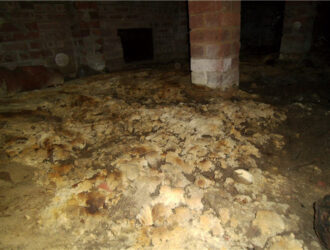 UnSafe Mould On Subfloor Ground