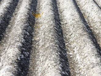 Sydney - pest and building Inspections - Asbestos Inspection 1