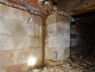 Sydney - pest and building Inspections - Termite Inspection